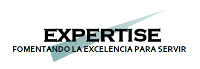expertiseconsultants.com